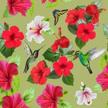 Flower pattern. Hibiscus white, red, bird hummingbird