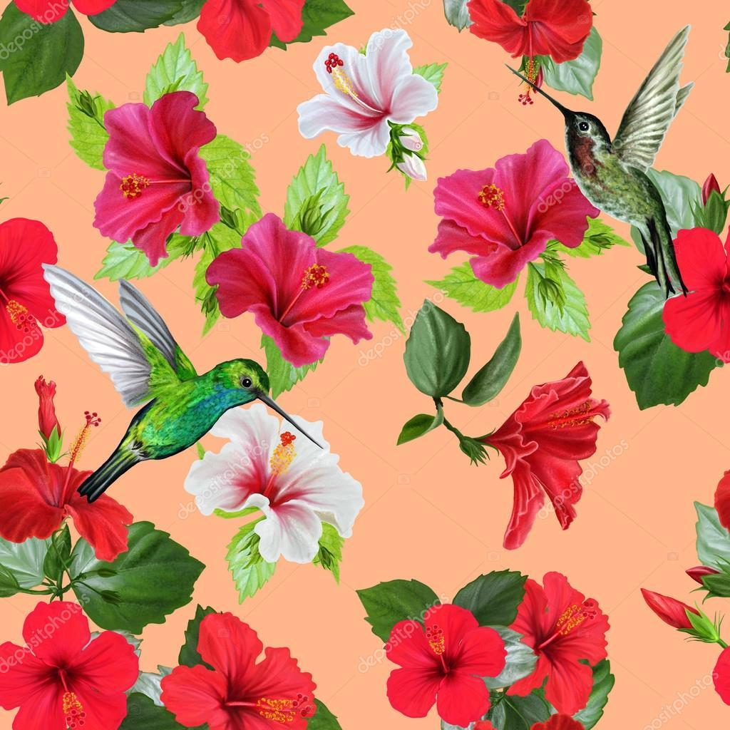 Colibri Hibiscus motif de fleurs d'hibiscus de colibri oiseau rouge et blanc