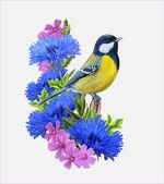 Fényképek Madár titmouse ül a háttérben, a Búzavirág kék virágok
