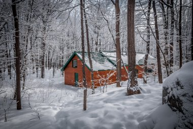 Maple sugar shack in the winter woods.