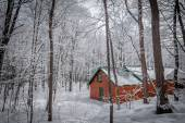 Maple syrup sugar shack in the Maple wooded winter forest.