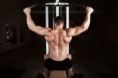 muscular bodybuilder training back