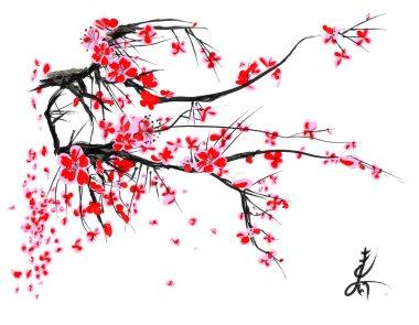 Realistic sakura blossom - Japanese cherry tree isolated on white background.