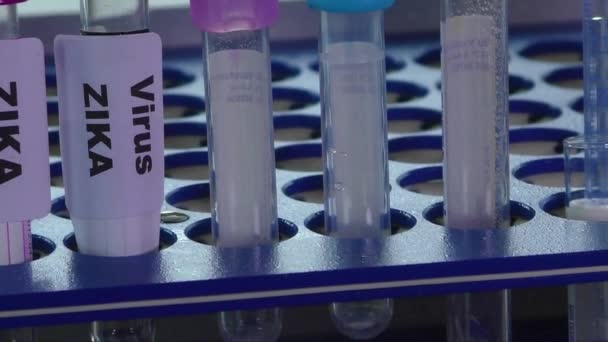 Zika virus koncept záběry s zkumavky
