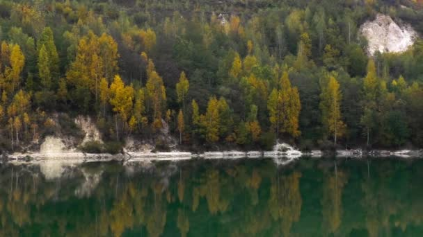 Beautiful forest reflecting on calm lake shore
