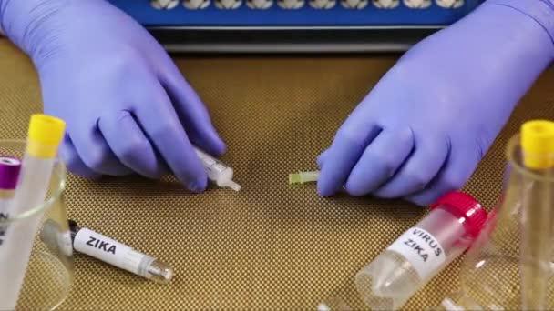Zika virus koncept krve kolekce s zkumavky