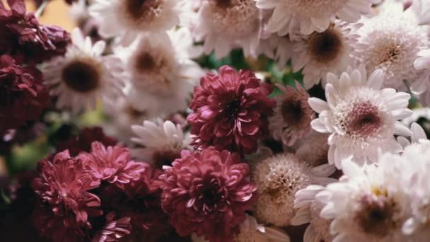 Krásná, svěží kytice bílé, fialové chryzantémy v interiéru