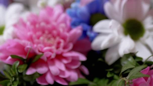 Fényes, buja csokor színes krizantém, orchideák, százszorszépek. Nagyítás
