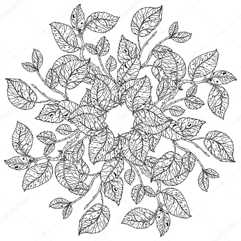 Black And White Flower Roses Stock Vector Mashabr 118253830