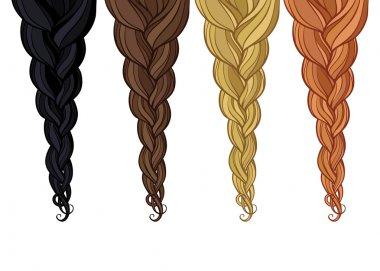 braid of hair