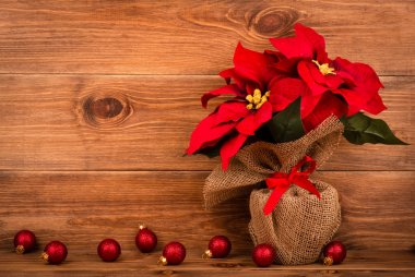 Christmas decoration - artificial red poincettia flower wrapped in sackcloth with red balls on the wooden background.