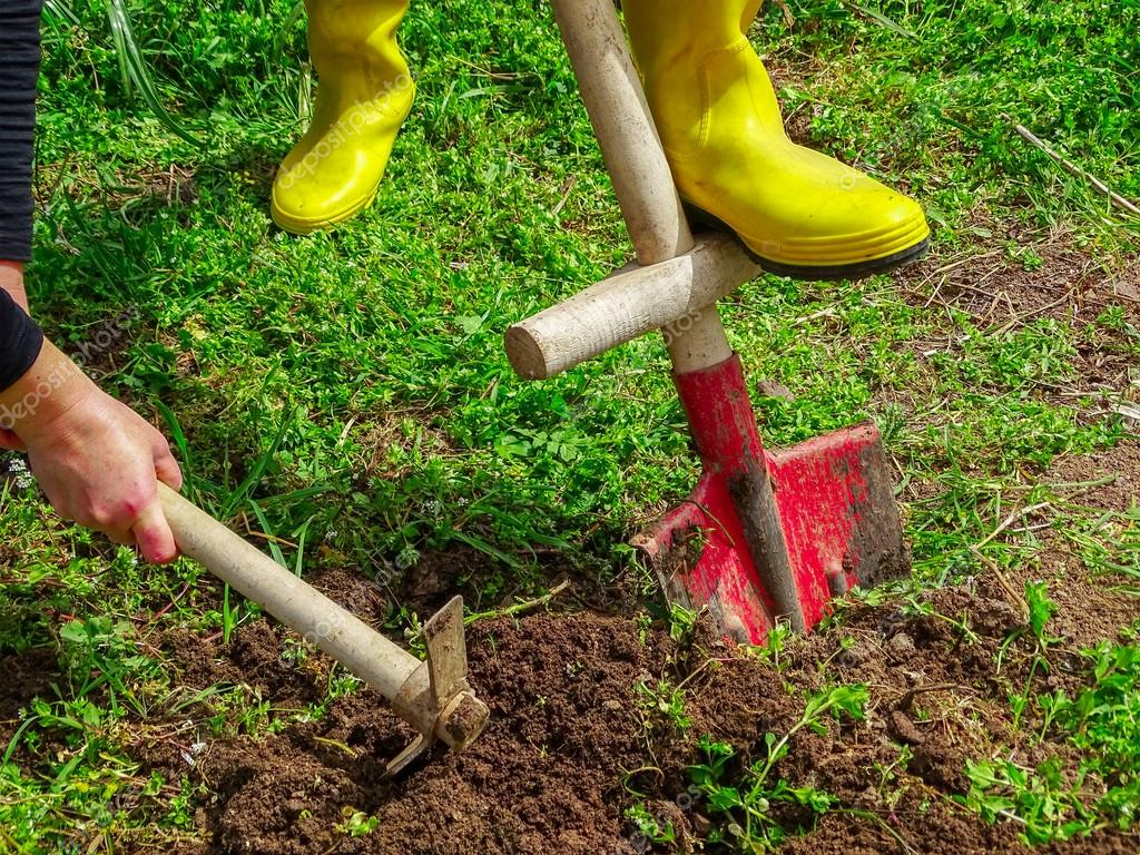 Digging With shovel and hoe in garden