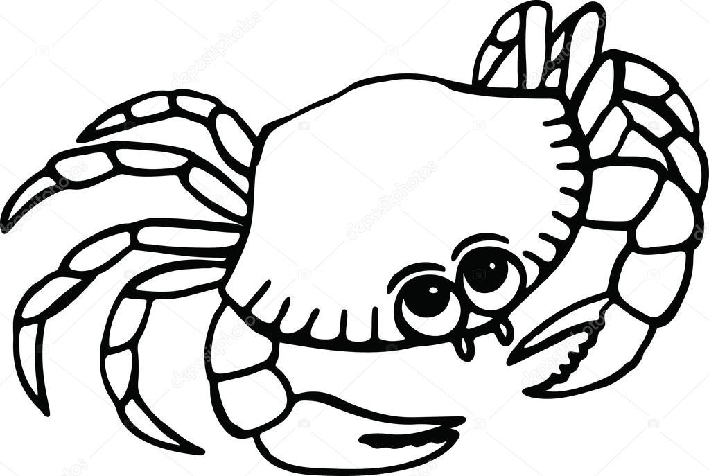 Dibujos animados playa cangrejo — Vector de stock © Prawny #64287587