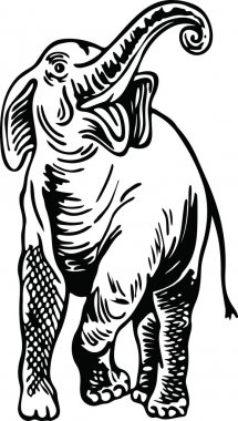 Drawing of a wild elephant