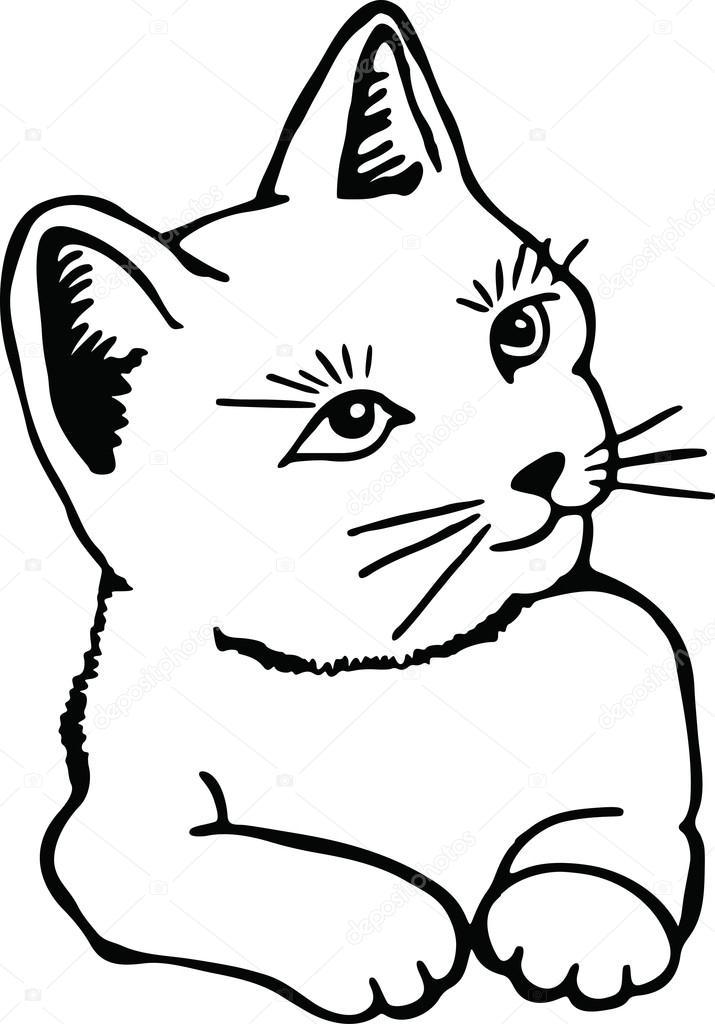 Disegno Di Un Simpatico Gatto Dellanimale Domestico Vettoriali