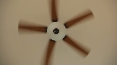Ceiling fan stock videos royalty free ceiling fan footages spinning ceiling fan stock video aloadofball Gallery