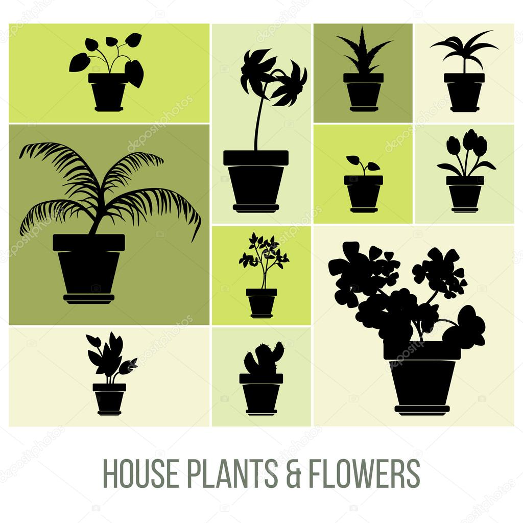 House Plants and Flowers in Pot Silhouettes,Vector Illustration