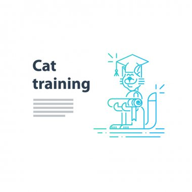 cat training service