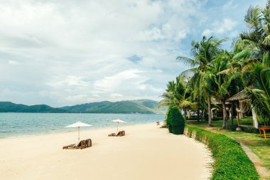 white sand beach with sunbeds and palms, Hon Tam, Nha Trang harb