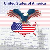 Adler ist ein Symbol Amerikas