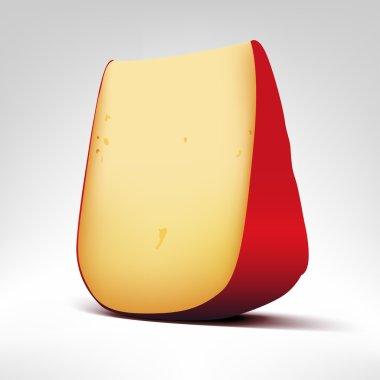 Gouda cheese illustration