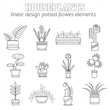 Set of linear botanical icons