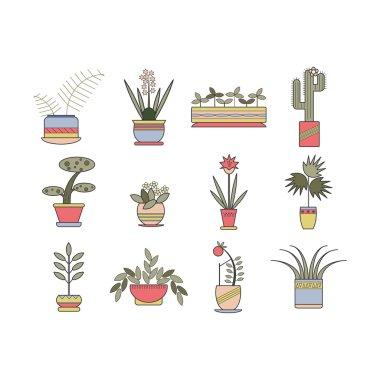 Set of linear botanical icons.