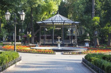 city park in Odessa, Ukraine.