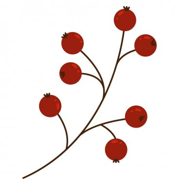 Sprig with red berries on a white background. Holly tree, mistletoe or ilex berries on a branch. Isolated illustration on a white background. Christmas cards, banners. Branch with berries in flat