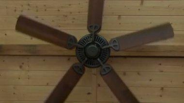 Plafoniere Per Ventilatori A Soffitto : Plafoniera da soffitto a led in alluminio nera forma cilindro