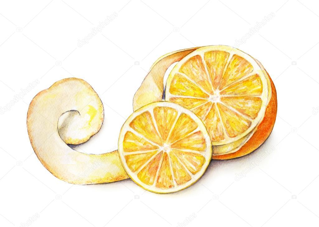 Arancia Frutta Sbucciata Matura Lavoro Manuale Frutta Tropicale