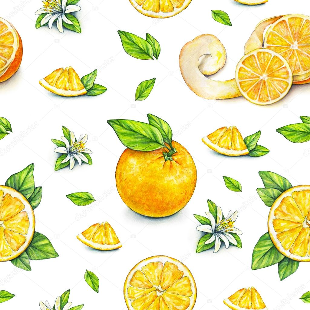 orange fruits m rs avec des feuilles vertes dessin aquarelle travail manuel fruits tropicaux. Black Bedroom Furniture Sets. Home Design Ideas