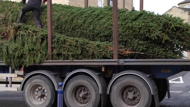 City-Weihnachtsbaum auf einem LKW zur Auslieferung