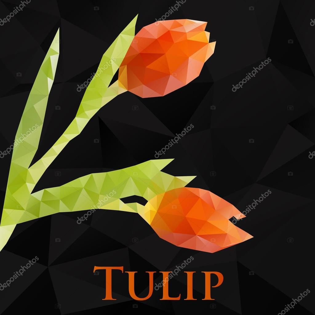 Vector tulip. Abstract flowers geometric. Polygonal design eps10.