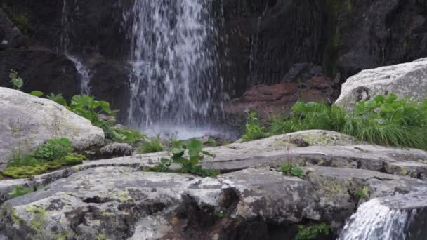 Waterfall falls from cliff with green grass and moss making foamy splashes