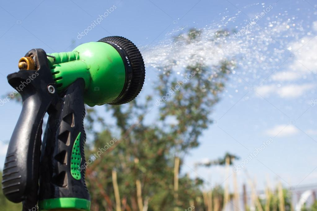 Watering lawn grass with a shower sprayer head