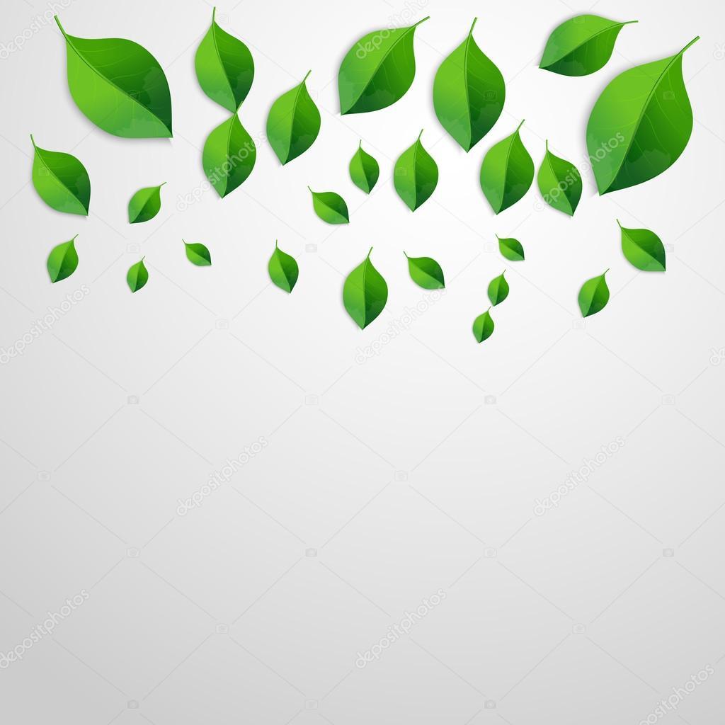 Fondo de hojas de color verde primavera. Vaya concepto verde ...