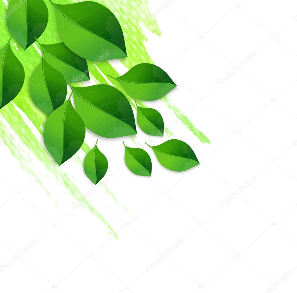 Fondo de hojas de color verde primavera con acuarela — Vector de ...