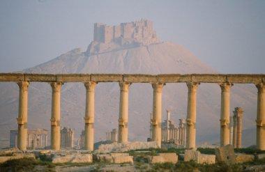 """Картина, постер, плакат, фотообои """"Пальмира"""", артикул 83848282"""