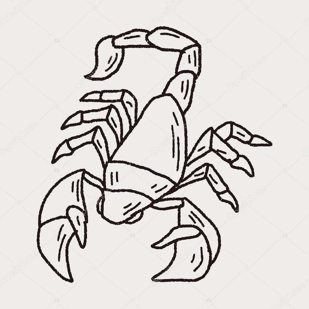 Dibujos A Lapiz De Escorpiones Doodle Escorpión Vector De Stock