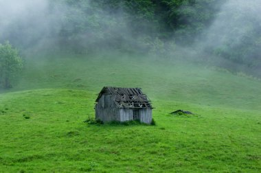 Small old wooden house in foggy forest. Mountains scenery. Natur