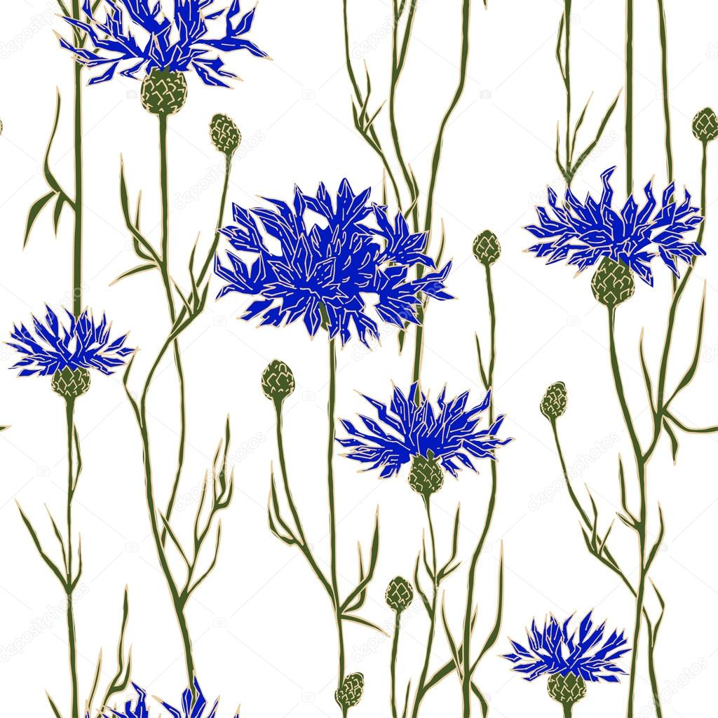 Seamless pattern with cornflowers. Hand-drawn vector illustration.