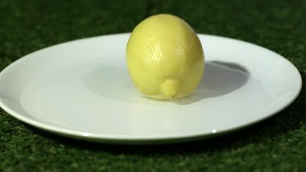 Lemon bouncing on plate