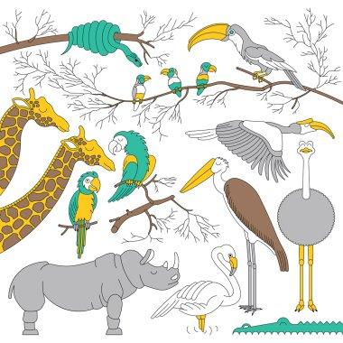 African animals sim 3