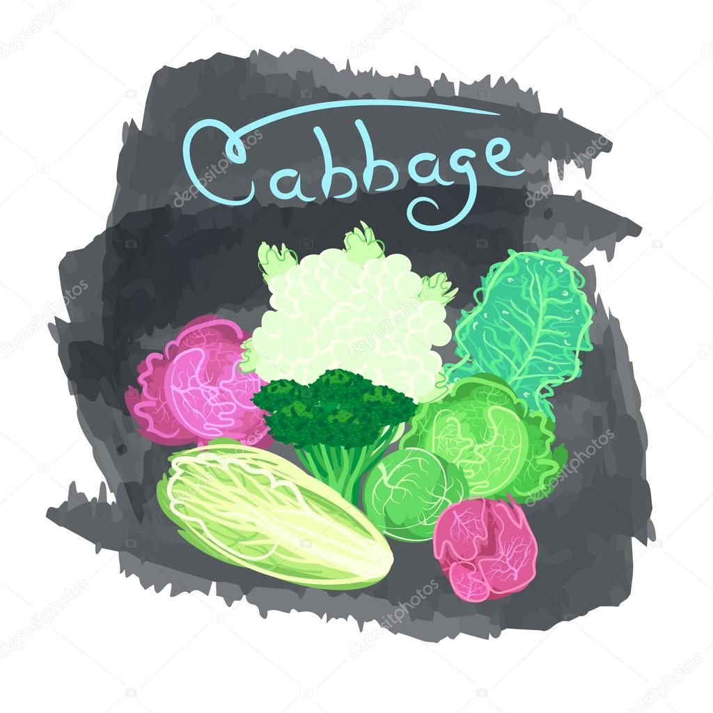 Set of eco cabbage on a dark grunge background.