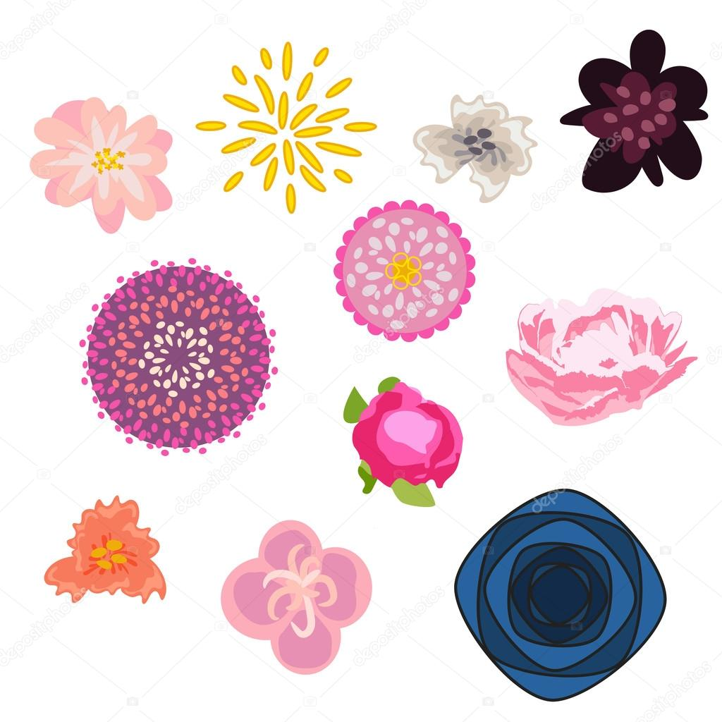 Flower vector set. Floral buds kit.