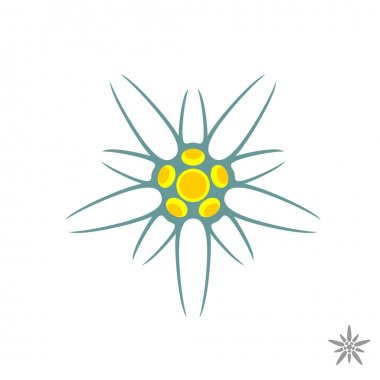 Edelweiss flower simple logo