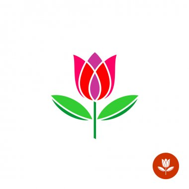 Tulip bud with leaves vector logo.