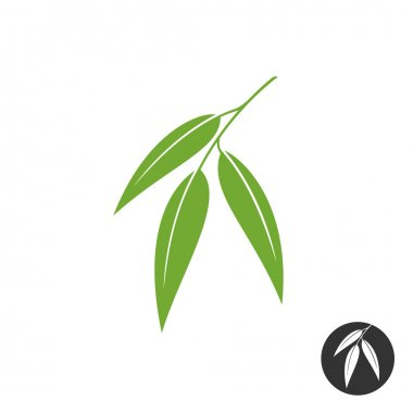 Eucalyptus leaves   silhouette.