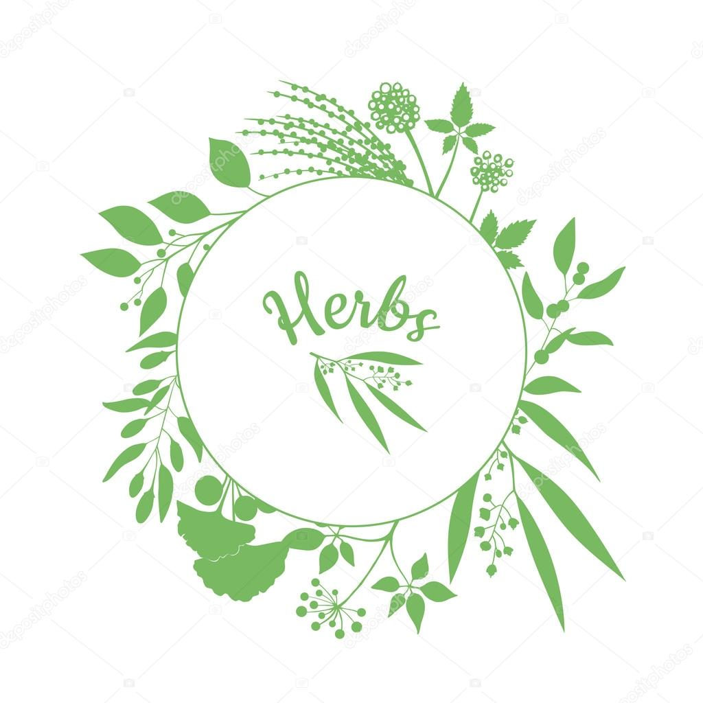 Fresh herbs store emblem. Green round frame with collection of plants. Silhouette of branches isolated on white background